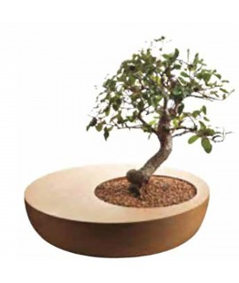 Vaso bonsai in sughero Zen