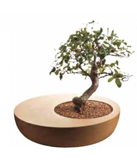 Vaso bonsai in sughero Zen